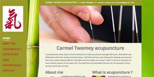 acupuncturist website design Berkhamsted